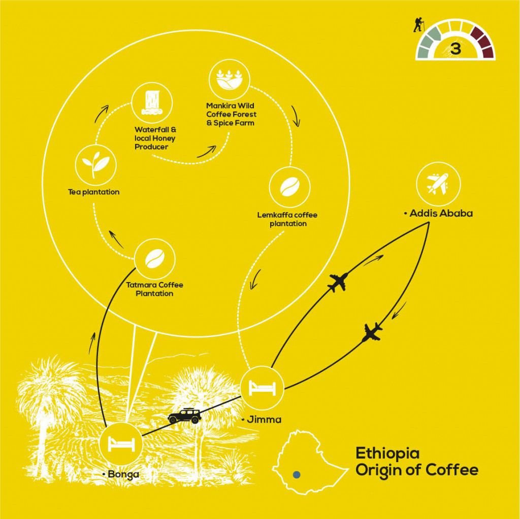 Origin of Coffee Journey, YellowWood Adventures Map