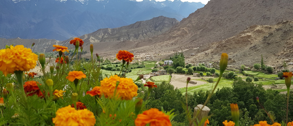View from Likir Monastery, Ladakh, India