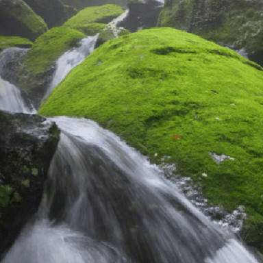 Waterfall in lush forests of Okinawa, Ryukyu Islands, Japan