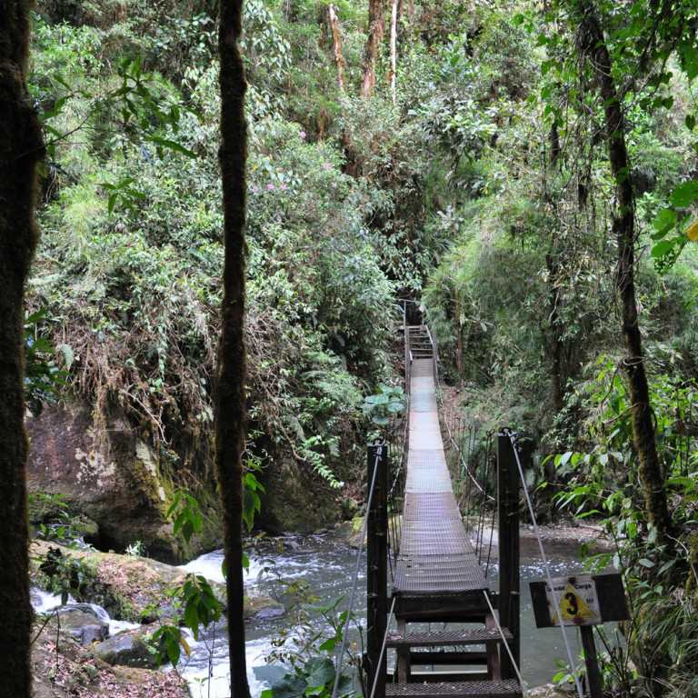 Slatted bridge across river, San Gerardo de Dota, Costa Rica