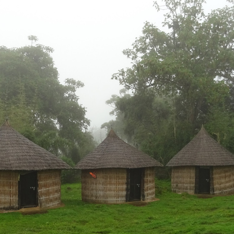 Huts in Bale Mountains National Park, Ethiopia