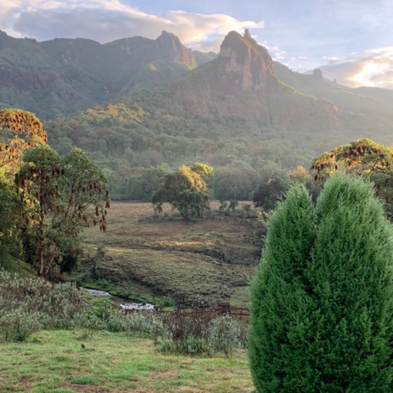 View from the terrace of Bale Mountain Lodge, Ethiopia
