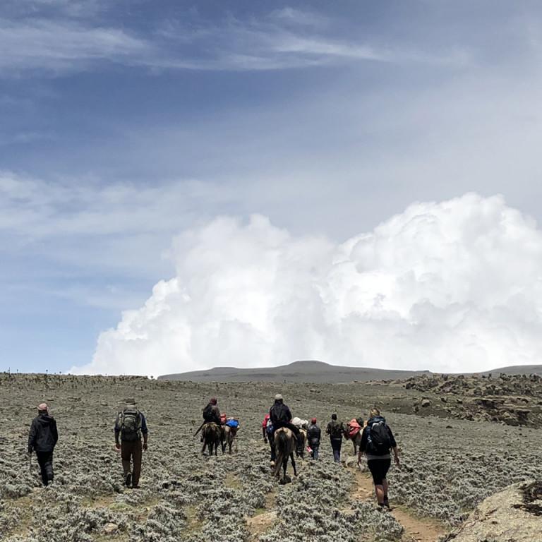 Trekking, Wolves of the Bale Mountains, Ethiopia