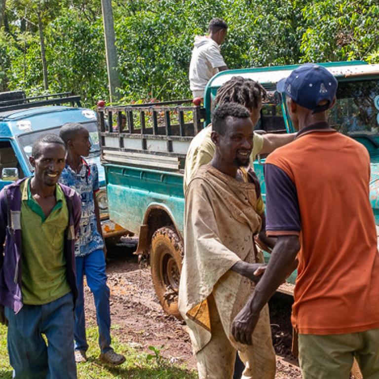 Rush hour - Kafa Biosphere Reserve, Ethiopia