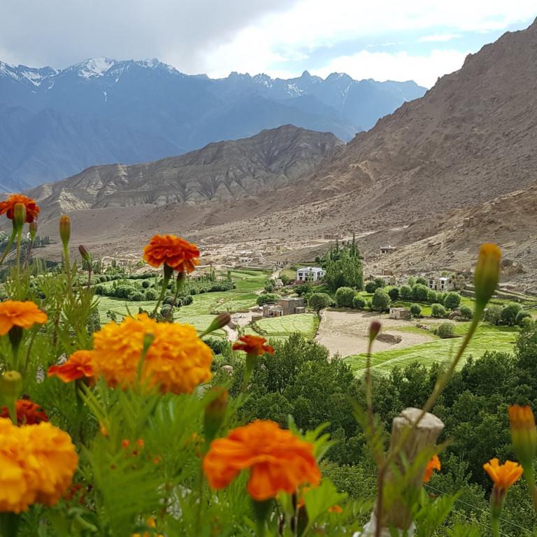 Views from Likir Monastery, Hiking the High Monasteries of Ladakh