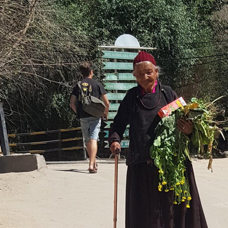 Ladakhi Woman carrying flowers, Leh, Ladakh