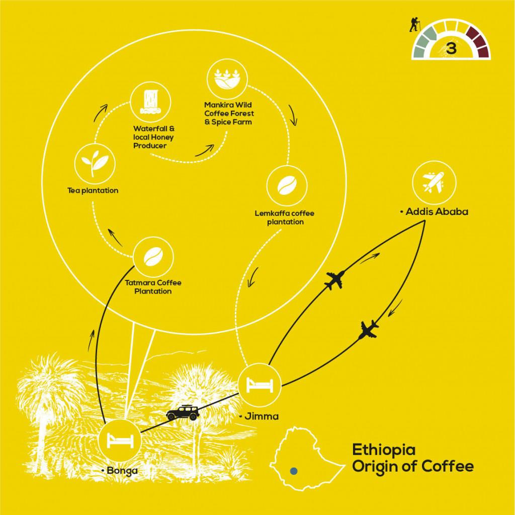 Origin of Coffee Journey, YellowWood Adventures Map