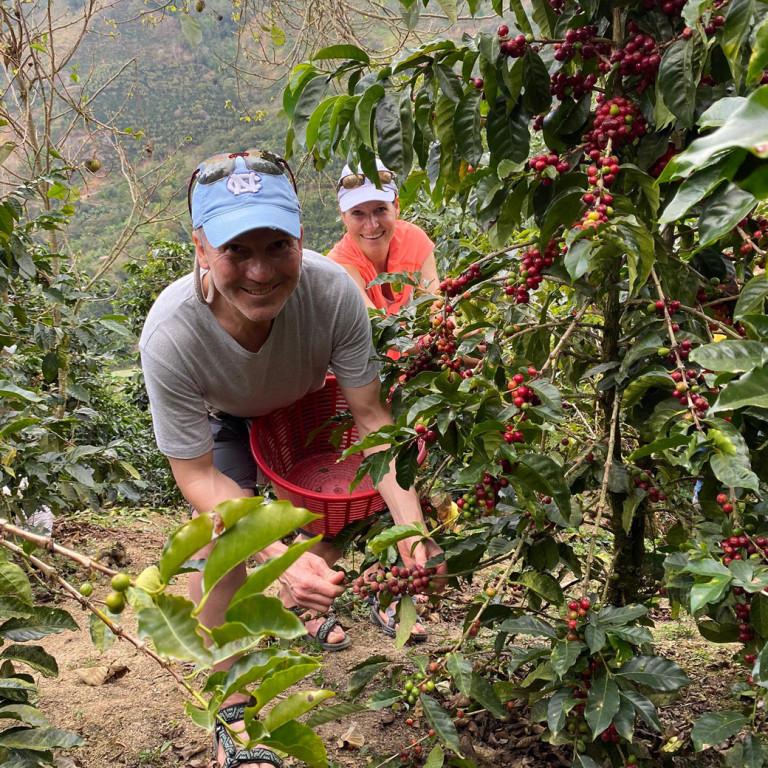 Picking Coffee Cherries, Organic Coffee Farm, Costa Rica