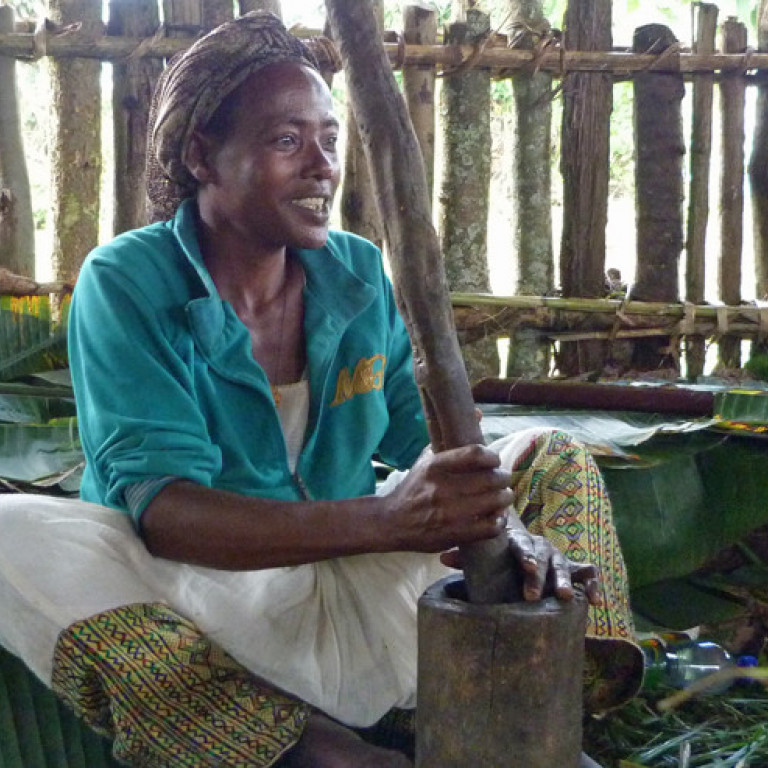 Grinding coffee, Origin of Coffee Journey, Ethiopia