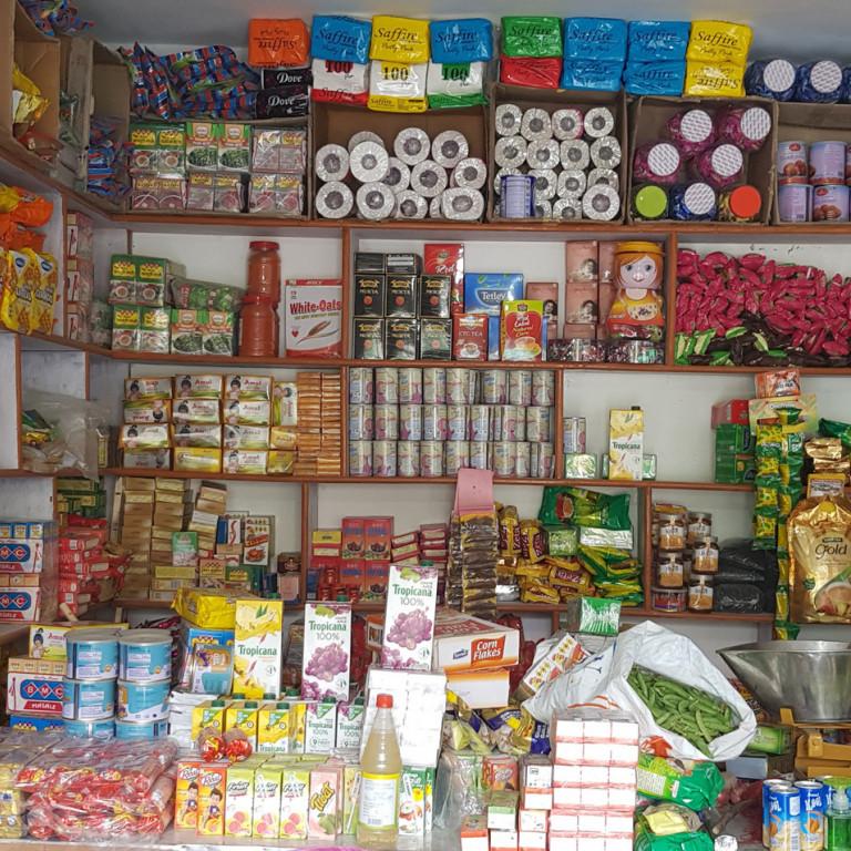 Local store, Tingmosgang, Hiking the High Monasteries of Ladakh
