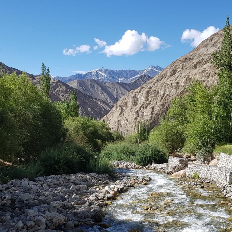 Hiking the High Monasteries of Ladakh, Day 2 of Trek