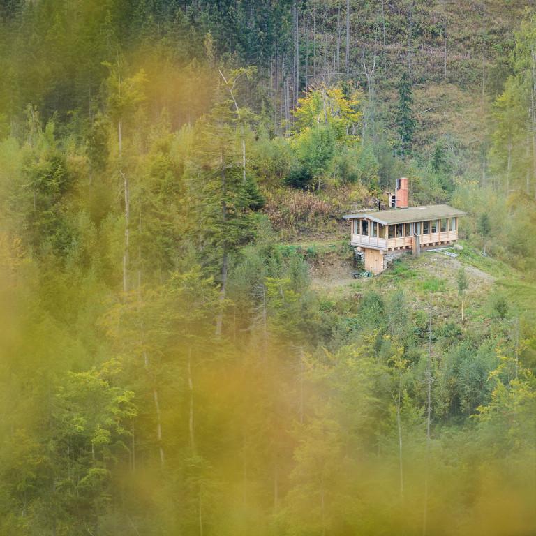 Bunea Wilderness Cabin