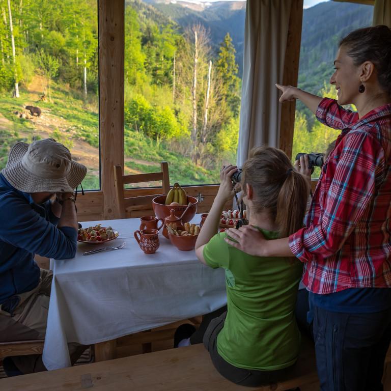 Bunea Cabin-Watching the wildlife-Carpathian Mountains