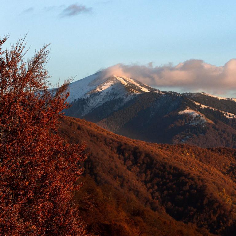 Wild Carpathian Peaks - Romania